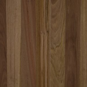 Wonderful Flooring Spotted Gum EF-SG-01