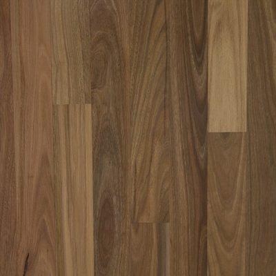 Wonderful Flooring Spotted Gum EF-SG-01