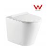 LT-1003D-R Floor Standing Toilet