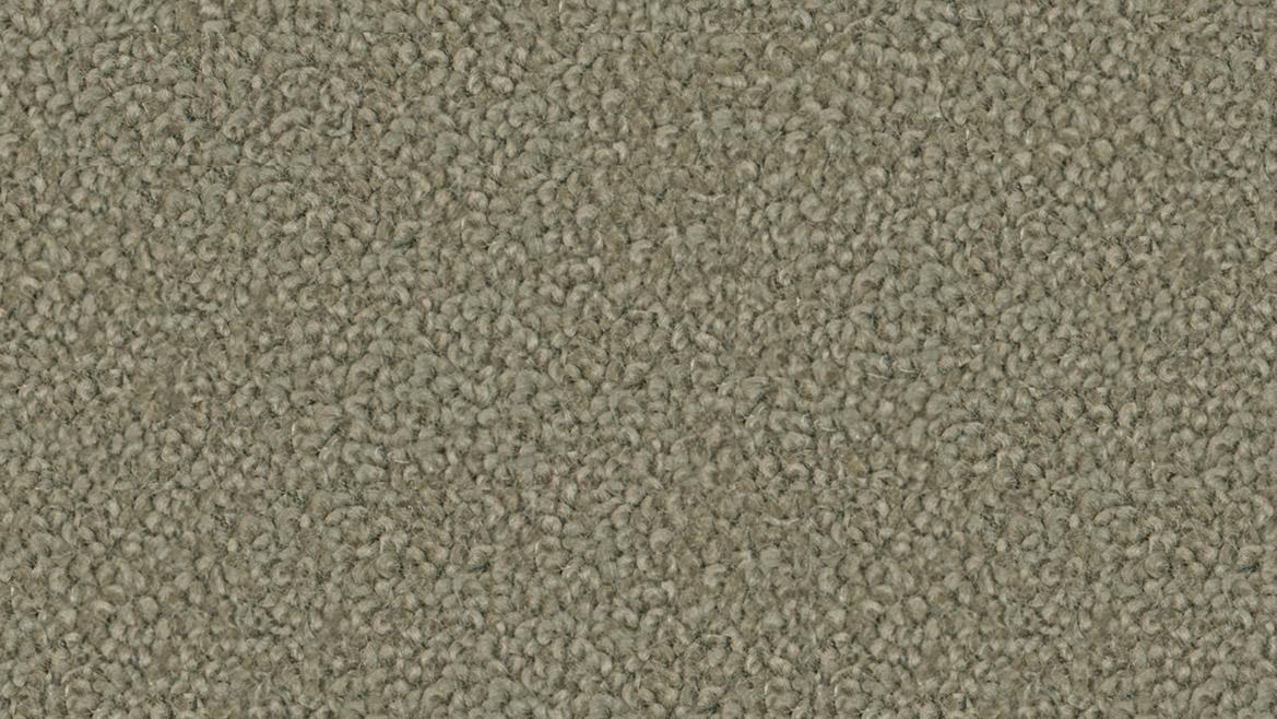 carpet-grand_luxury-deerhorn-floor-godfrey_hirst_carpet