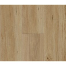 Penguin Hybrid Blackbutt PG1802