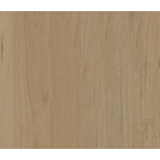 Penguin Hybrid Coastal Blackbutt PG1502